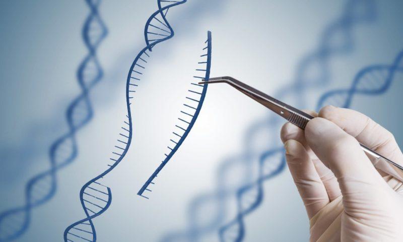 Пробив в лечението на наследствени болести с генно модифициране