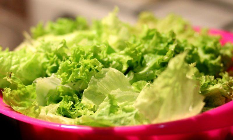 Предупреждение: Бактерията салмонела устойчиво се заселва в зеленчуците | | Новини от България и Света